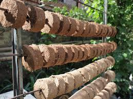 Biomass briquettes Tanzania
