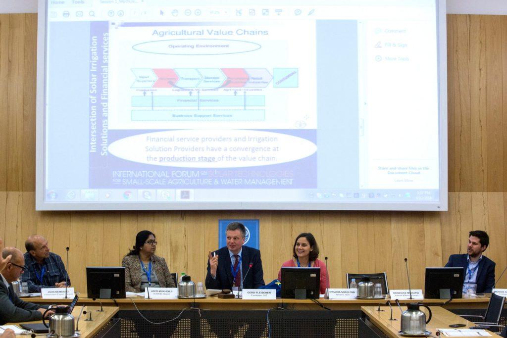 Genia Sokolova at the FAO Panel
