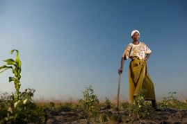 Women and Agriculture | Renewable Energy